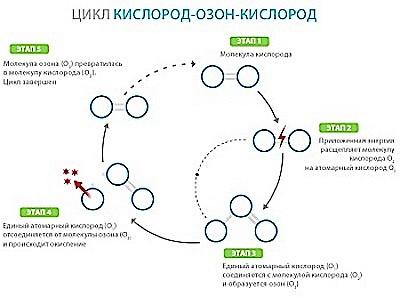 Цикл превращения кислорода в озон и обратно